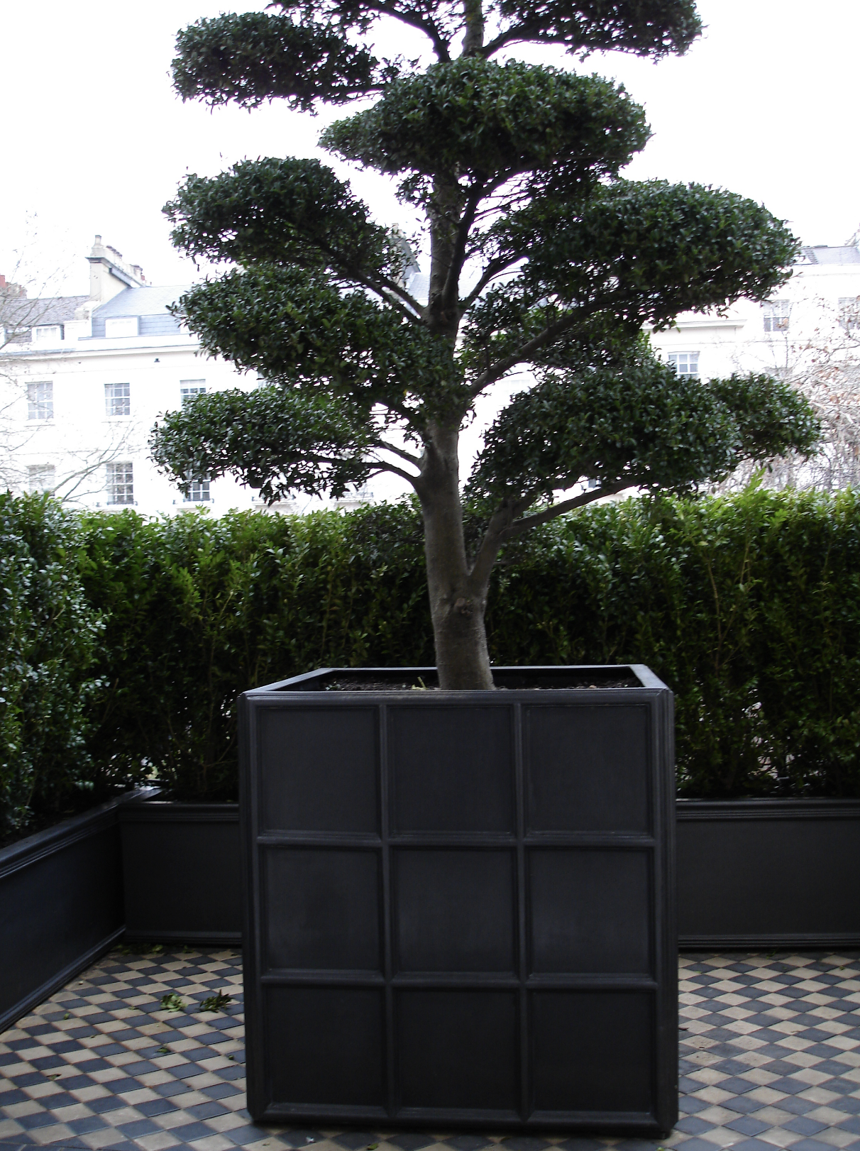 Large Downing Street Fibreglass Faux Lead Square Planters Available Online